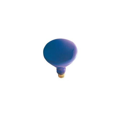 Bulbrite Industries 150W 12-Volt Light Bulb