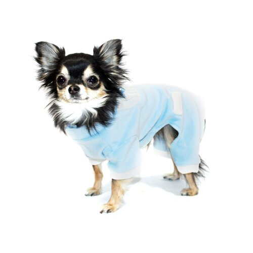 Hip Doggie Tux Dog Jumper in Blue