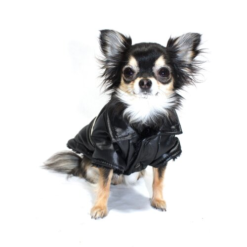 Hip Doggie Classic V Dog Coat in Black
