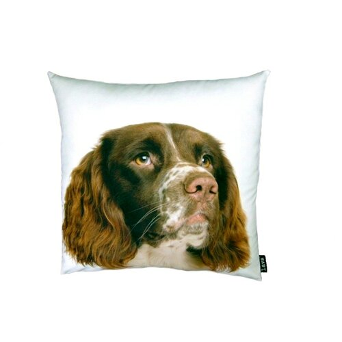 lava English Springer Spaniel Pillow