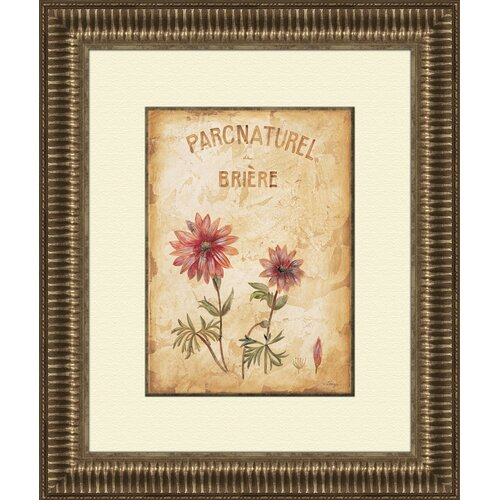 Pro Tour Memorabilia Parcnaturel A Framed Graphic Art
