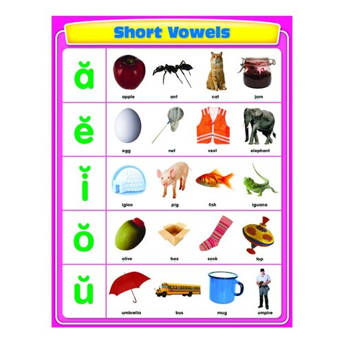 Frank Schaffer Publications/Carson Dellosa Publications Short Vowels Chartlet