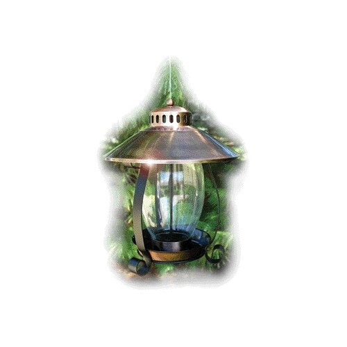 Audubon/Woodlink Lantern Decorative Bird Feeder