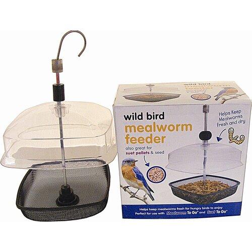 Premium Mealworm Platform/Tray Bird Feeder