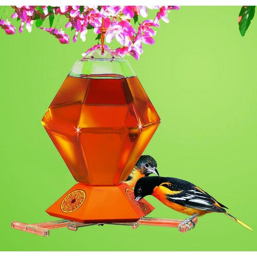 Woodstream Hummingbird Plastic Hexagon Oriole Feeder