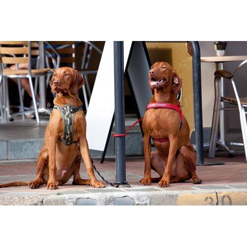 EzyDog Chestplate Dog Harness