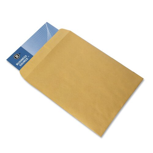 "Business Source Catalog Envelopes, Plain, 9""x12"", 250 per Box, Kraft"