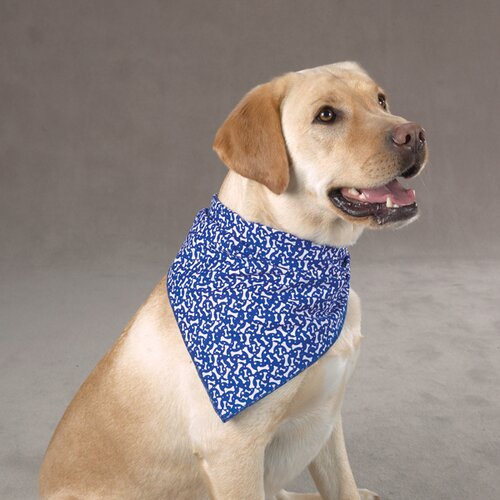 Aria Blue Ribbon Bone Dog Bandana