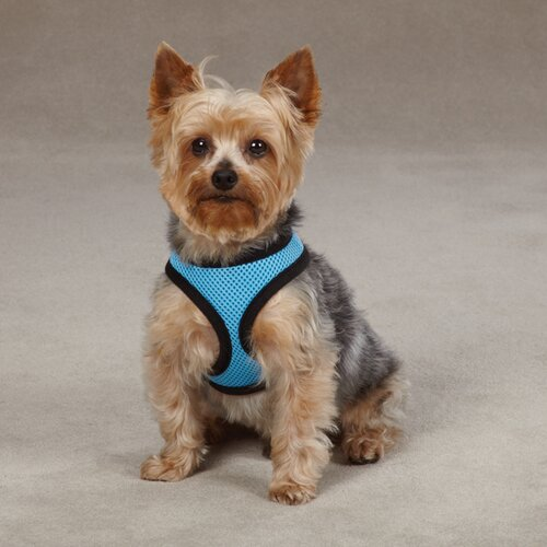 Casual Canine Pastel Mesh Dog Harness