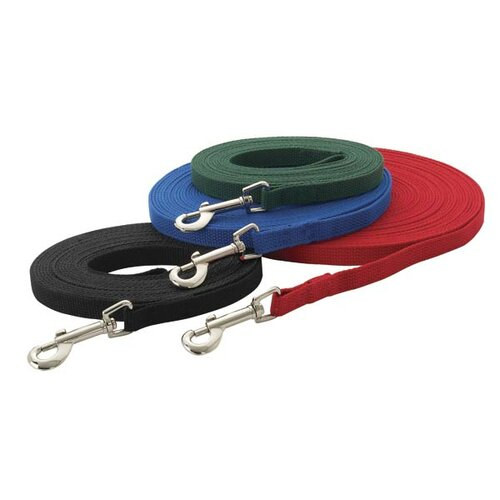 Cotton Web Dog Training Lead in Red