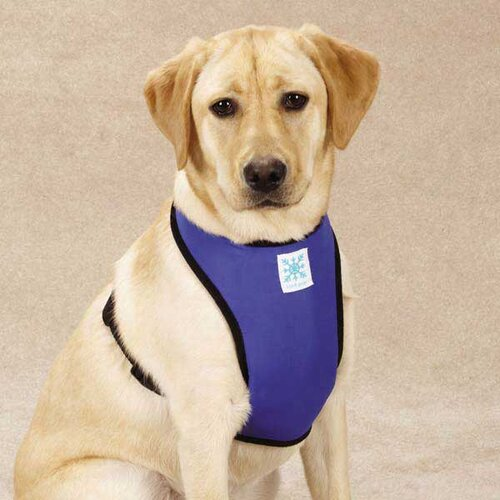 Cool Pup Dog Harness