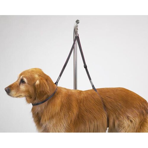 Top Performance Dog Nylon Table Harness