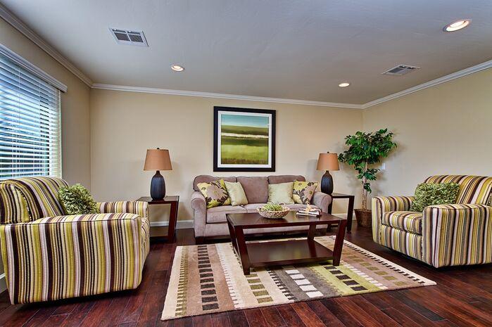 Contemporary Living Room photo by Elle Interiors AZ