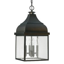 Westridge 4 Light Outdoor Hanging Lantern