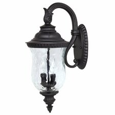<strong>Capital Lighting</strong> Ashford 2 Light Outdoor Arm Up Wall Lantern