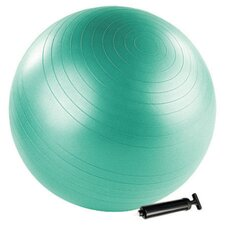 "25.5"" Stability Ball"