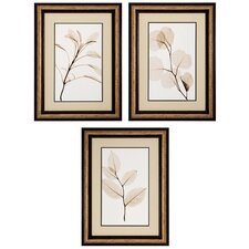 3 Piece Sage Salal Eucalypt Wall Art Set