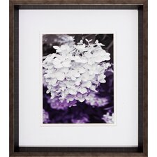 Aubergine 2 Piece Framed Photographic Print Set