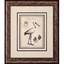 Spoonbill Flamingo 2 Piece Framed Wall Art Set