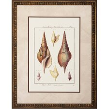 <strong>Propac Images</strong> Rostellaire / Pyrule Wall Art (Set of 2)
