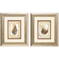 Shell IV and VI 2 Piece Framed Painting Print Set (Set of 2)