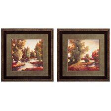 Sullivan Creek I and II Framed Print Set (Set of 2)