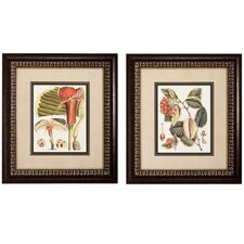 <strong>Propac Images</strong> Botanical II and IV Framed Print Set (Set of 2)