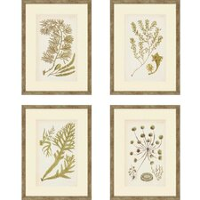 Sea I by Ziffer 4 Piece Framed Graphic Art Set