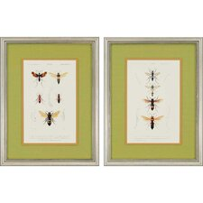 Bees by Blanchard 2 Piece Framed Photographic Print Set
