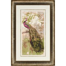 Rustic Peacock II by Goldberger Framed Painting Print