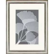 Gingkos II by Meyers Framed Painting Print