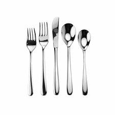45 Piece Dublin Splendid Flatware Set