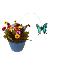 Potted Fluttering Butterfly
