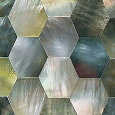 "Ocean Jewels 2"" x 2"" Hexagon Accent Tile in Black Lip"