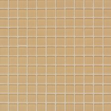 "Maracas Glass 1"" x 1"" Frosted Mosaic Tile in Golden Rod"