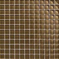 "Maracas Glass 1"" x 1"" Glossy Mosaic Tile in Tortoise"