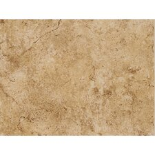 "Fidenza 9"" x 12"" Wall Tile in Dorado"