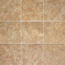 """Del Monoco 20"""" x 20"""" Glazed Field Tile in Adriana Rosso"""