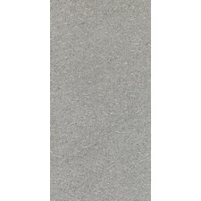 "<strong>Daltile</strong> Magma 24"" x 12"" Light Polished Field Tile in Flat Ash"