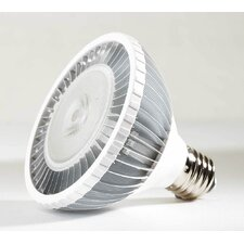 18W LED PAR38-100-240V, 640 Lumens, Cool