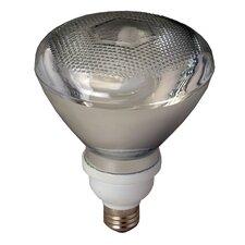 23W Gray (2700K) Fluorescent Light Bulb (Pack of 12)