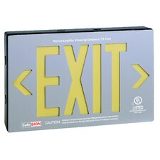 Self Luminescent Exit in Brushed Aluminium