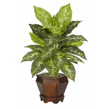 Dieffenbachia Assorted Silk Desk Top Plant in Pot (Set of 2)