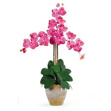 <strong>Nearly Natural</strong> Triple Phalaenopsis Silk Orchid Arrangement in Dark Pink