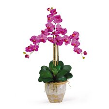<strong>Nearly Natural</strong> Triple Phalaenopsis Silk Orchid Arrangement in Orchid