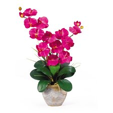 <strong>Nearly Natural</strong> Double Phalaenopsis Silk Orchid Arrangement in Beauty Pink