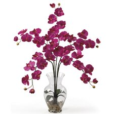 <strong>Nearly Natural</strong> Liquid Illusion Phalaenopsis Silk Orchid Arrangement in Beauty Pink