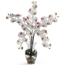 <strong>Nearly Natural</strong> Liquid Illusion Phalaenopsis Silk Orchid Arrangement in White