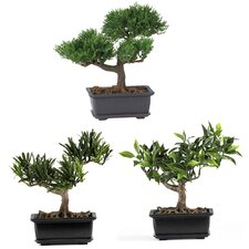 "8.5"" Silk Bonsai Plant in Green (Set of 3)"