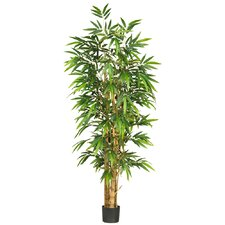 "72"" Silk Belly Bamboo Tree in Green"